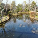 池袋の憩いと寛ぎのスポット空中庭園